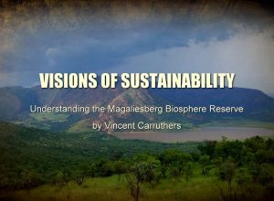 Visions of Sustainability – Part 2