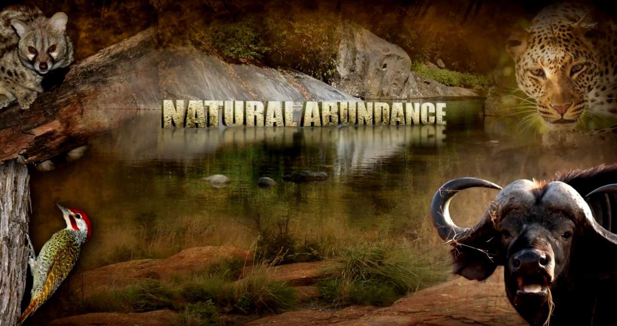 Natural Abundance -Part 4
