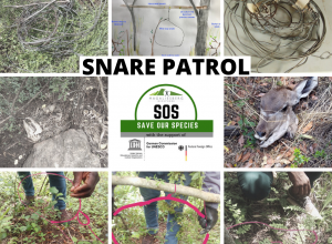 SOS Project – Anti Poaching Relief